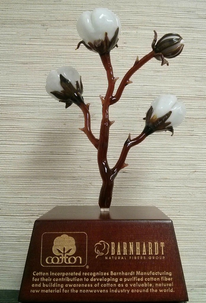Cotton Inc Award