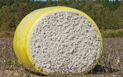 Nonwoven cotton production